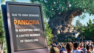 huge line for pandora the world of avatar grand opening stretches through disney s animal kingdom