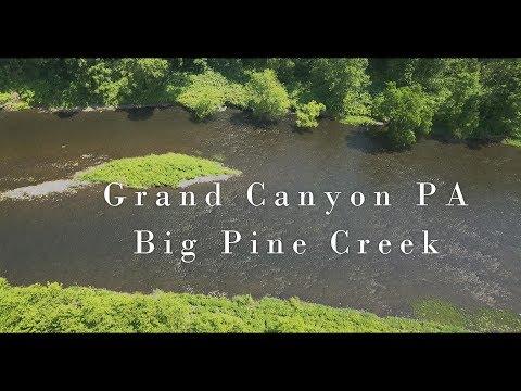 WBD - Big Pine Creek Grand Canyon PA Euro Nymphing & Dry Fly