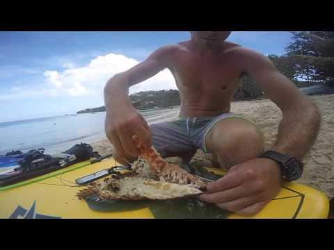 Virgin Islands Lifestyle
