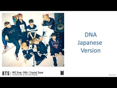 BTS - Love Yourself Japanese Album