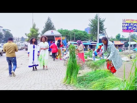 Endish, Dani, Sisay and Tesfaye - Hoya Gobe | hoya gobe - New Ethiopian Music 2017 (Official Video)