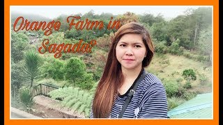 Nature Trip In Sagada | Day3 Vlog | Lake Danum | KilTepan |Orange Farm