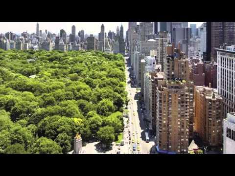 Центральный парк Нью-Йорка - Central Park New York