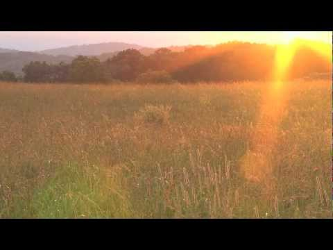 Abraham Hicks Nothing is more important than feeling good (HD)