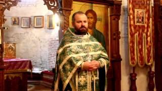 Воскресная проповедь отца Александра Болонникова (13 апреля 2014 года). Вход Господень в Иерусалим