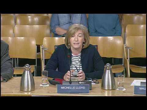 Equalities and Human Rights Committee - Scottish Parliament: 1 June 2017