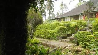 Sri Lanka,ශ්රී ලංකා,Ceylon,Tea Plantation Manager Colonial Era Villa