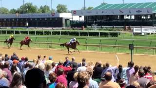A Day at Churchill Downs! Horse Racing and Betting Fun!