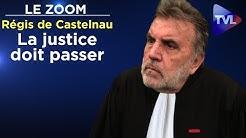 Face à l'incurie du gouvernement, la justice doit passer - Le Zoom - Régis de Castelnau - TVL