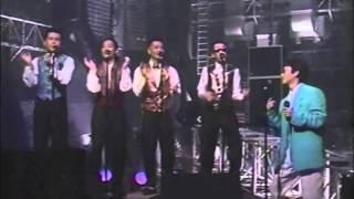 Music Party Casiopea 杉山清貴 Jive Domino Line 野呂一生 向谷実 鳴瀬...