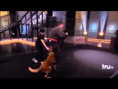 Killer Karaoke   Dogs Attack Karaoke Singer!   YouTube