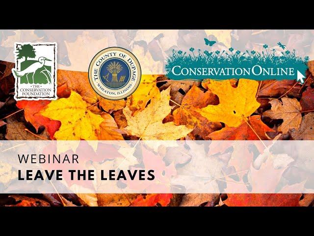 Leave the Leaves | Webinar