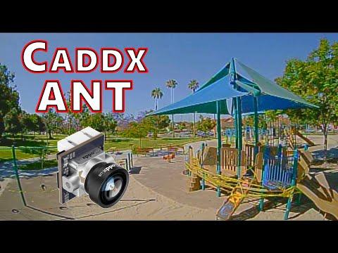 Фото Caddx ANT FPV Camera Review ????