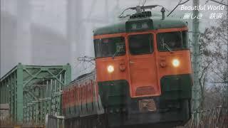 ありがとう!さよなら!しなの鉄道115系S25編成湘南色 今週末で引退、廃車に 2021.3.8 川中島ー安茂里にて    panasd 2245