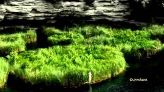 ~Chill Out Land of Beauty~.flv Thumbnail