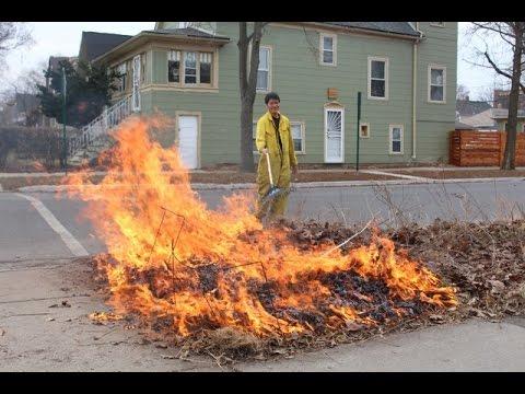 Deb's Big Backyard: Prescribed Burn for Native Gardens