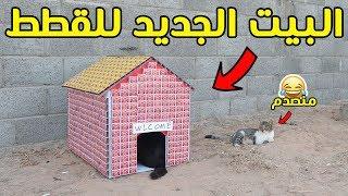سويت بيت قطط من 700 كرتون كبريت | اجمل تجربة !!!🔥😍
