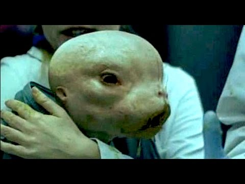 Alien Human Hybrids, Among Us?