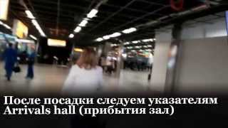 видео Авиабилеты Борисполь – Амстердам. Билеты на самолеты из аэропорта Борисполь в Амстердам (авиарейсы Киев