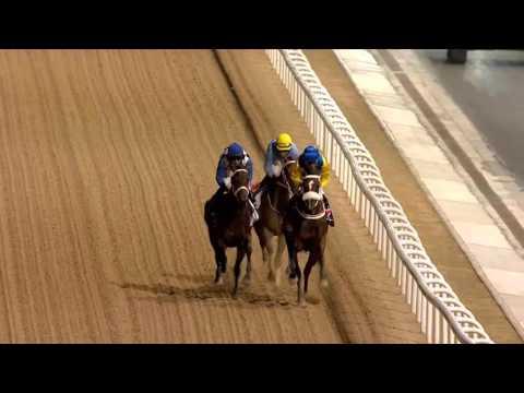 DWCC Meydan Racecourse 03-03-16, Race 3 UAE Oaks Sponsored by Emirates Airline