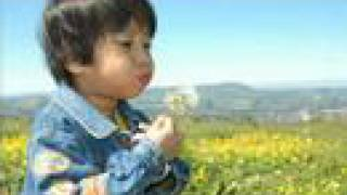 Meio Ambiente - Educação e Consciência Ambiental