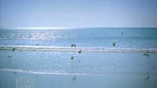 Cantores de Hispalis - Por la bahía thumbnail