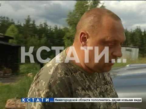 Дары природы частного характера - в Балахнинском районе жителей начали выгонять из озер и лесов.