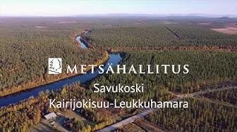 Erätontteja Savukoskeltä, Kairijokisuu Leukkuhamara | Metsähallituksen Laatumaa-tontit