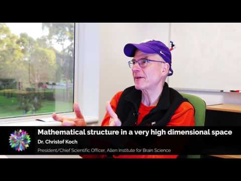 Christof Koch - One big misconception about consciousness