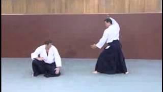 видео айкидо против карате
