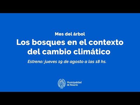 Los bosques en el contexto del cambio climático