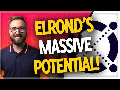 Elrond eGLD's GREATEST advantage in the crypto market! (Wesley Kress explains)