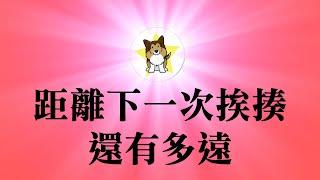 吉林通化,连狗权都不如上海北京,为什么?正式回应粉红们的一个攻击|200多年来的文明差距,接受和拒绝,中国距离下一次挨揍还有多远?