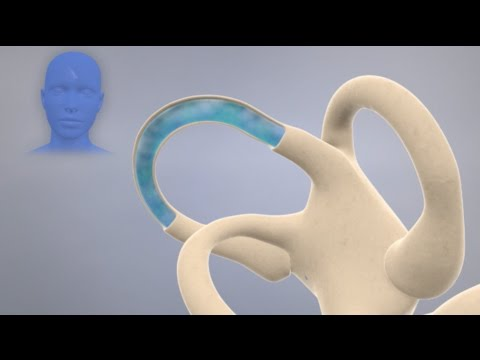 How the Inner Ear Balance System Works - Labyrinth Semicircular Canals