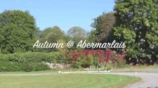 Autumn @ Abermarlais - September 2014