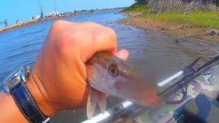 Риболовля на Амурі, пара годин на річці після роботи , Риболовля на ультролайт.