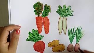 vegetables draw root beginners easy painting watercolor