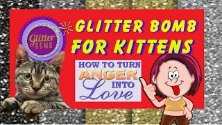 Glitter Bombs for kittens - Bob the Cat will send your glitter bomb for you