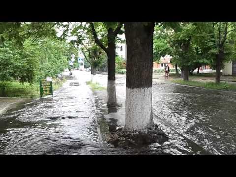 улица Полупанова (Киев) после первого майского дождика 14.05.2013