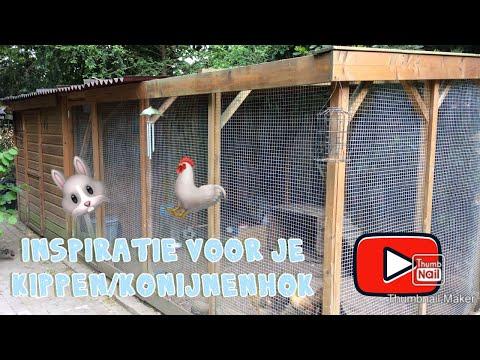10 ideeën voor je kippen of konijnenhok | Inspiranimal