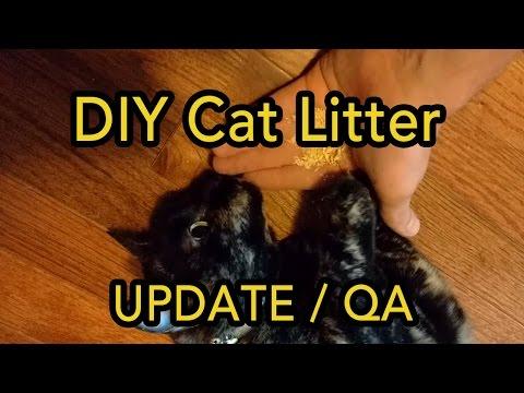 DIY FREE Cat Litter: Update / QA