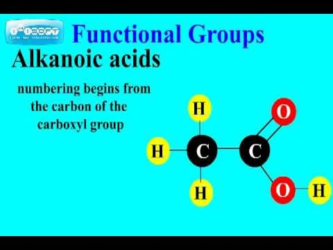 Introduction to Functional Groups Chemistry Tutorial