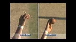 Shane Warne bowling analysis
