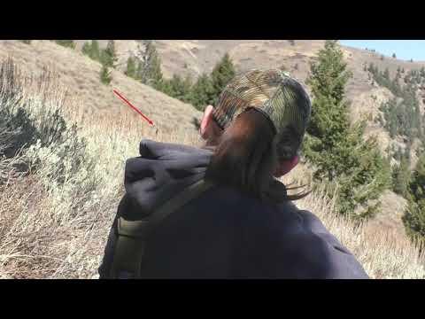 Idaho Rifle Elk Hunt DAY3