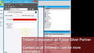 epicor 10 changing control appearance in configurator input