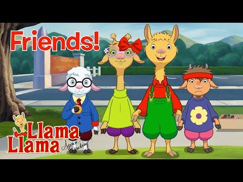 Friends!   Llama