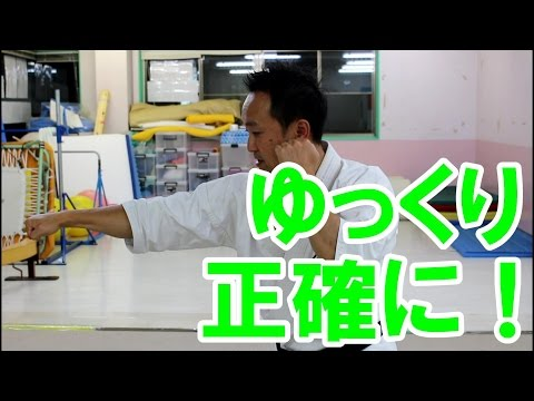 空手 組手テクニック 正拳突きのやり方 ~ゆっくり形を確かめながら~ Seiken Tsuki
