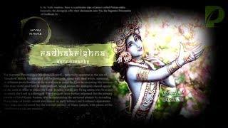 Radhakrishn soundtracks 94 - RANGO BHARA JIVAN MERA