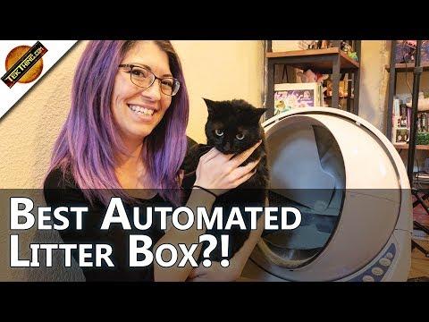 The Best Litter Robot, the Litter Robot III - TekThing Short