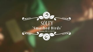 Sóley - Smashed Birds